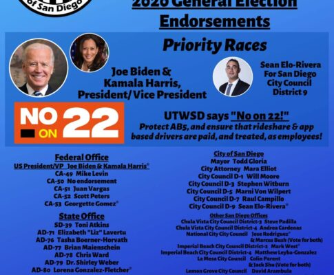 UTWSD 2020 General Election Endorsements